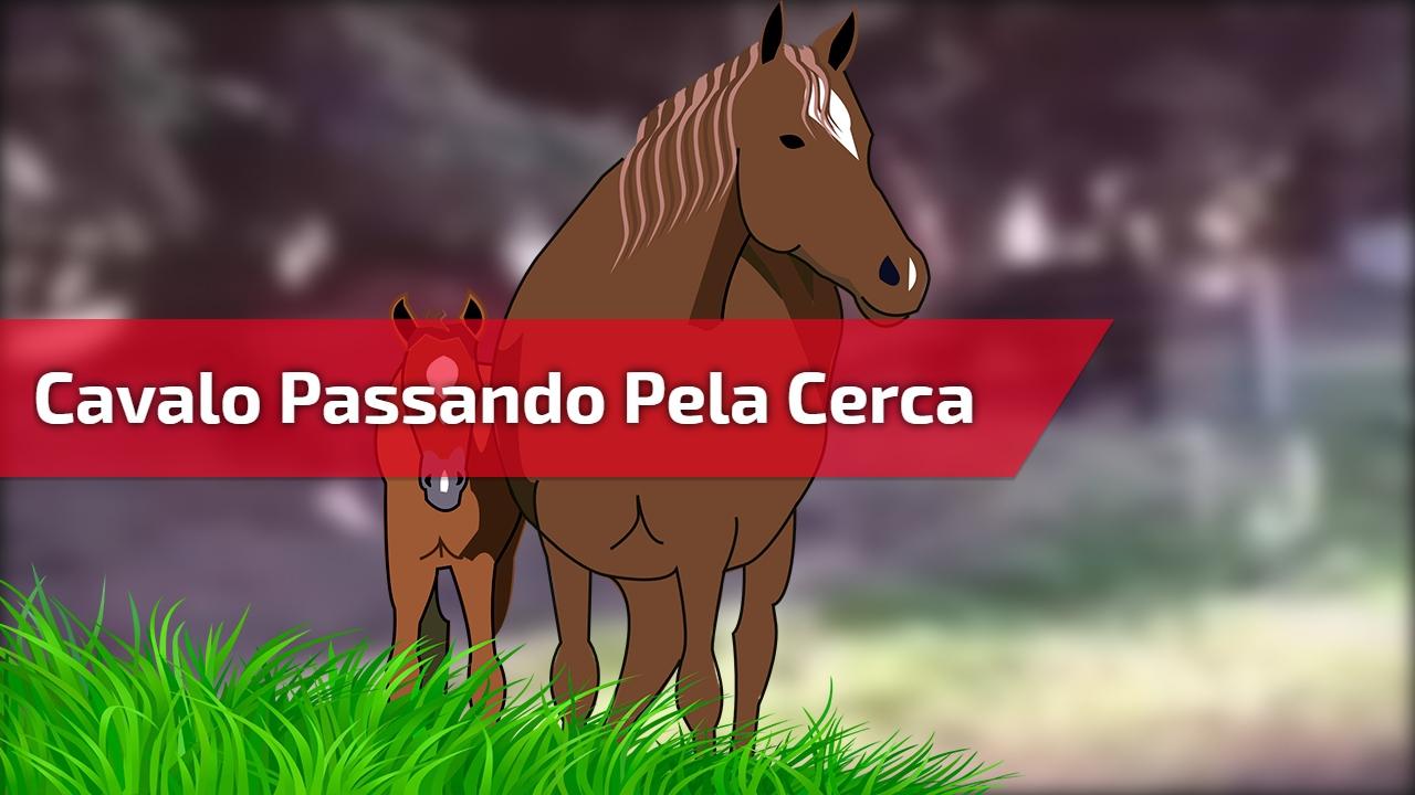 Cavalo passando pela cerca de maneira muito inteligente, confira!!!