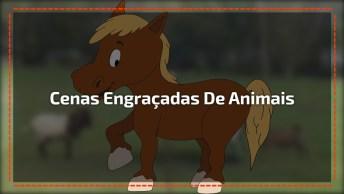 Compilação De Cenas Engraçadas De Animais, Como Eles Fazem Artes!