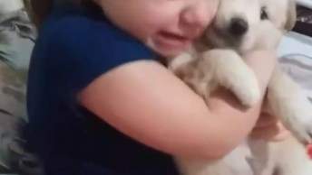 Criança Chora Com Filme Que Cachorro Espera O Dono Que Morreu Em Estação!