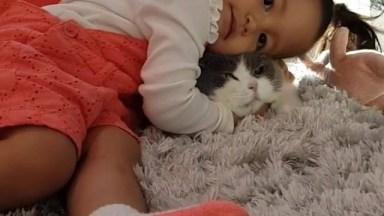Criança Com Gato Gigante, Ele É Uma Fofura Enorme, Confira!