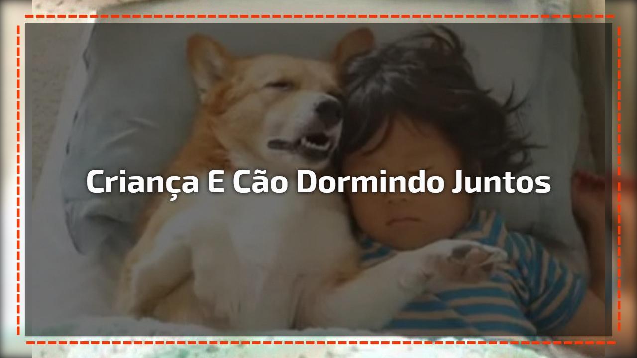 Criança e cachorro dormindo juntos, é muita fofura e companheirismo!