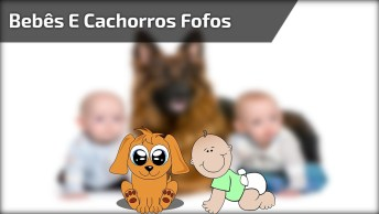 Crianças Brincando Com Seus Cães De Estimação, Olha Só O Que Eles Aprontam!