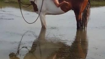 Crianças Brincando De Anadar A Cavalo Na Água, Foi Difícil Subir Hahaha!