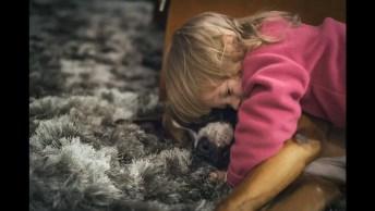 Emocionante História De Um Cachorro, Um Amigo Que Nunca Deixou De Ser Feliz!