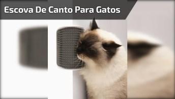Escova De Canto Para Gatos, Eles Adoram Se Coçar Nisso, Confira!