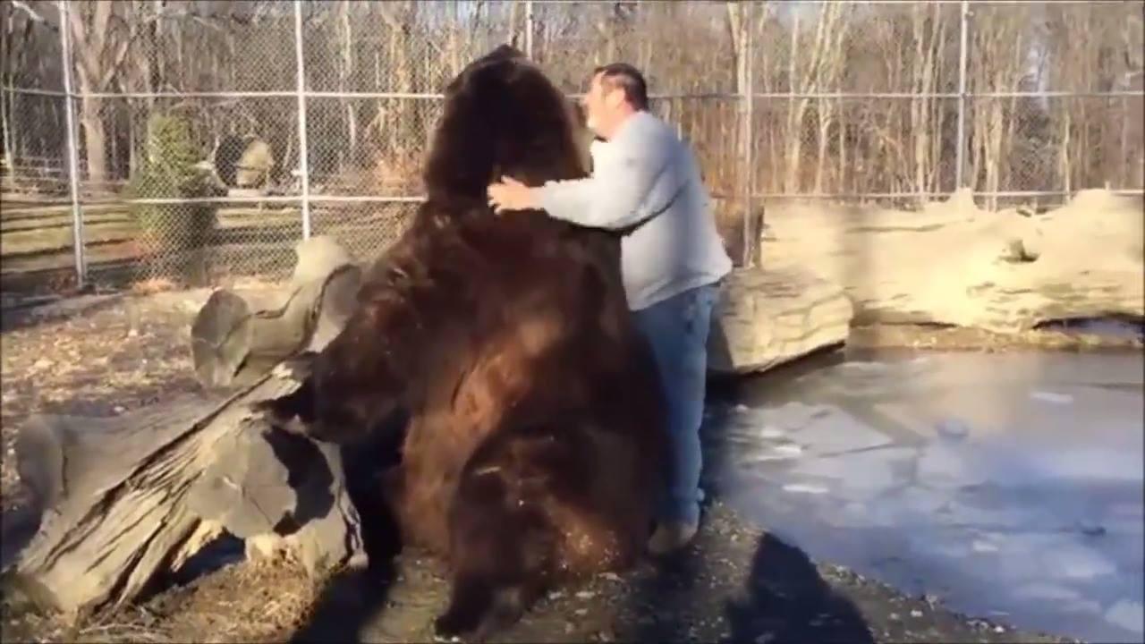 Esse vídeo de animal é surreal!