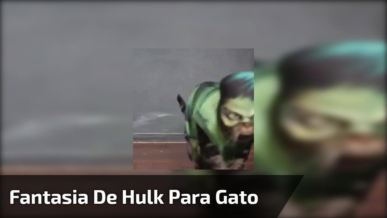 Fantasia de Hulk para gato