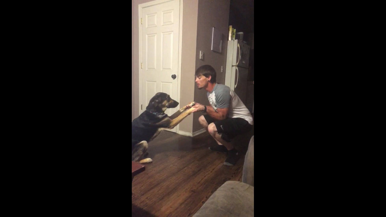 Fazendo agachamento com seu melhor amigo