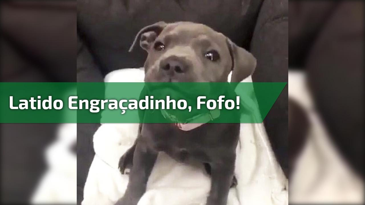 LATIDO BAIXAR DE CACHORRO DE SOM