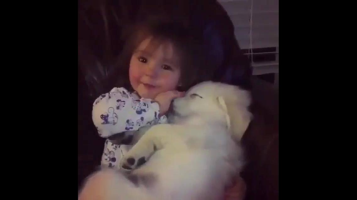 Filhote de cachorro curtindo o amor de sua pequena dona