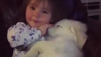 Filhote De Cachorro Curtindo O Amor De Sua Pequena Dona, Olha Só Que Fofura!