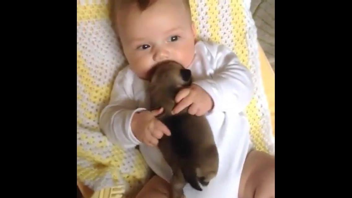 Filhote de cachorro e bebê, existe dupla mais linda