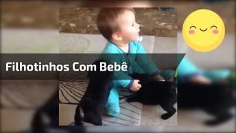Filhotinhos De Cachorro Brincando Com Bebê, Uma Combinação Perfeita!