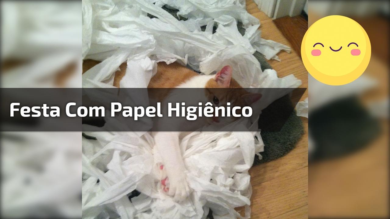 Festa com papel higiênico