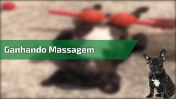 Ganhando Massagem Relaxante Na Barriguinha, Que Gostaria?