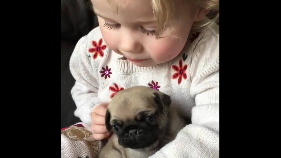 Garotinha com seu cachorrinho