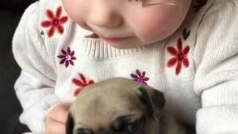Garotinha Com Seu Cachorrinho, Olha Só Que Coisinhas Mais Fofinhas!