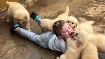 Garotinho Brincando Com Filhotinhos Fofos, Veja Que Ataque De Fofura!