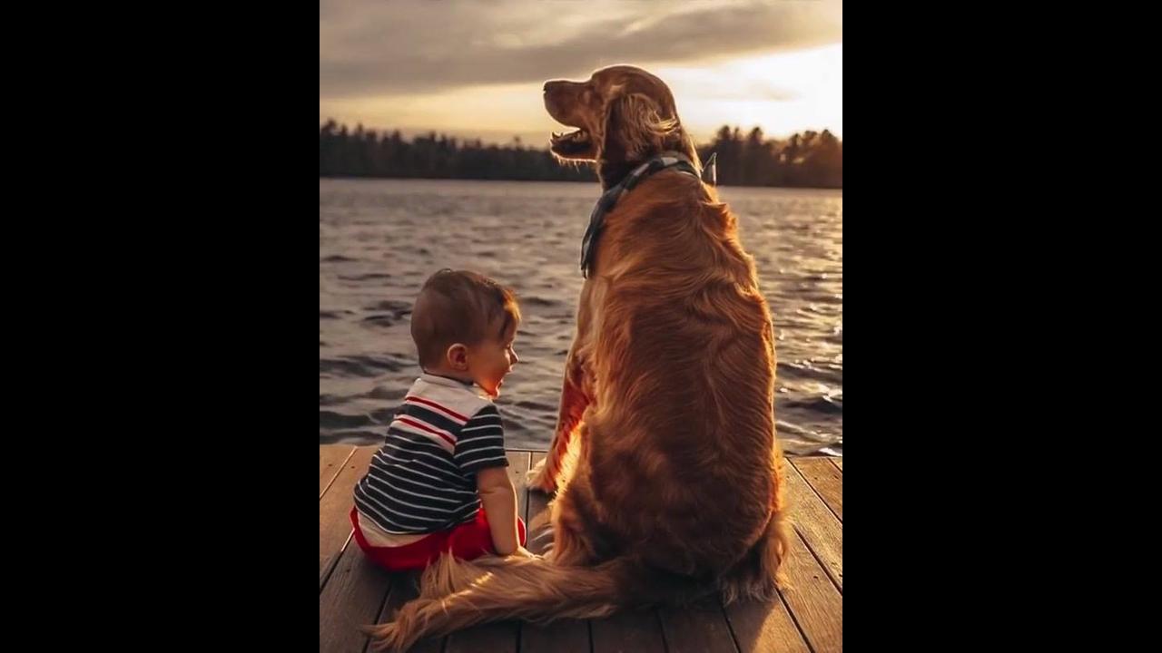 Garotinho e cachorro curtindo por do sol