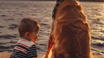 Garotinho E Cachorro Curtindo Por Do Sol, Que Linda Imagem De Se Ver!