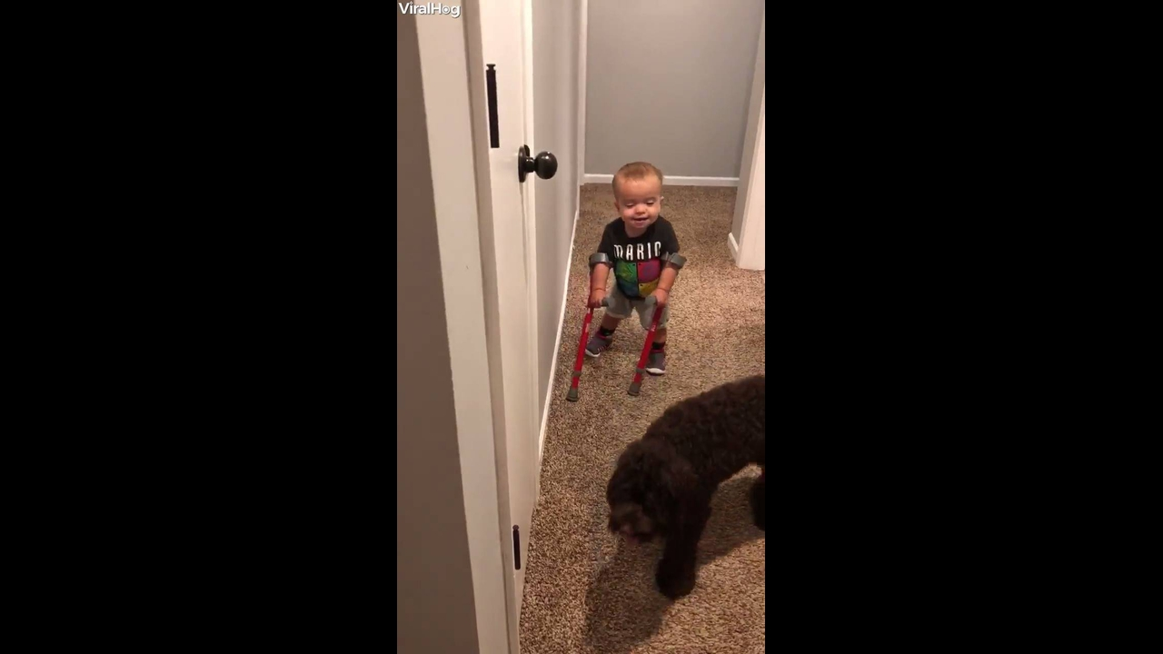 Garotinho falando com sua cachorra que esta andando