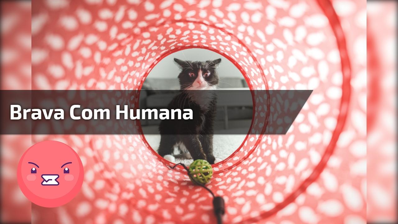 Brava com humana