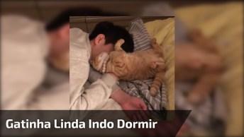 Gatinha Linda Indo Dormir Com Seu Tutor, Ela É Muito Carinhosa!
