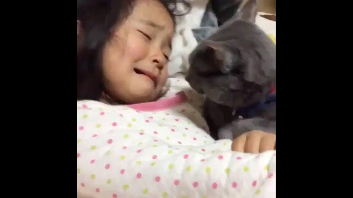 Gatinho consolando menina, que cena mais linda de se ver