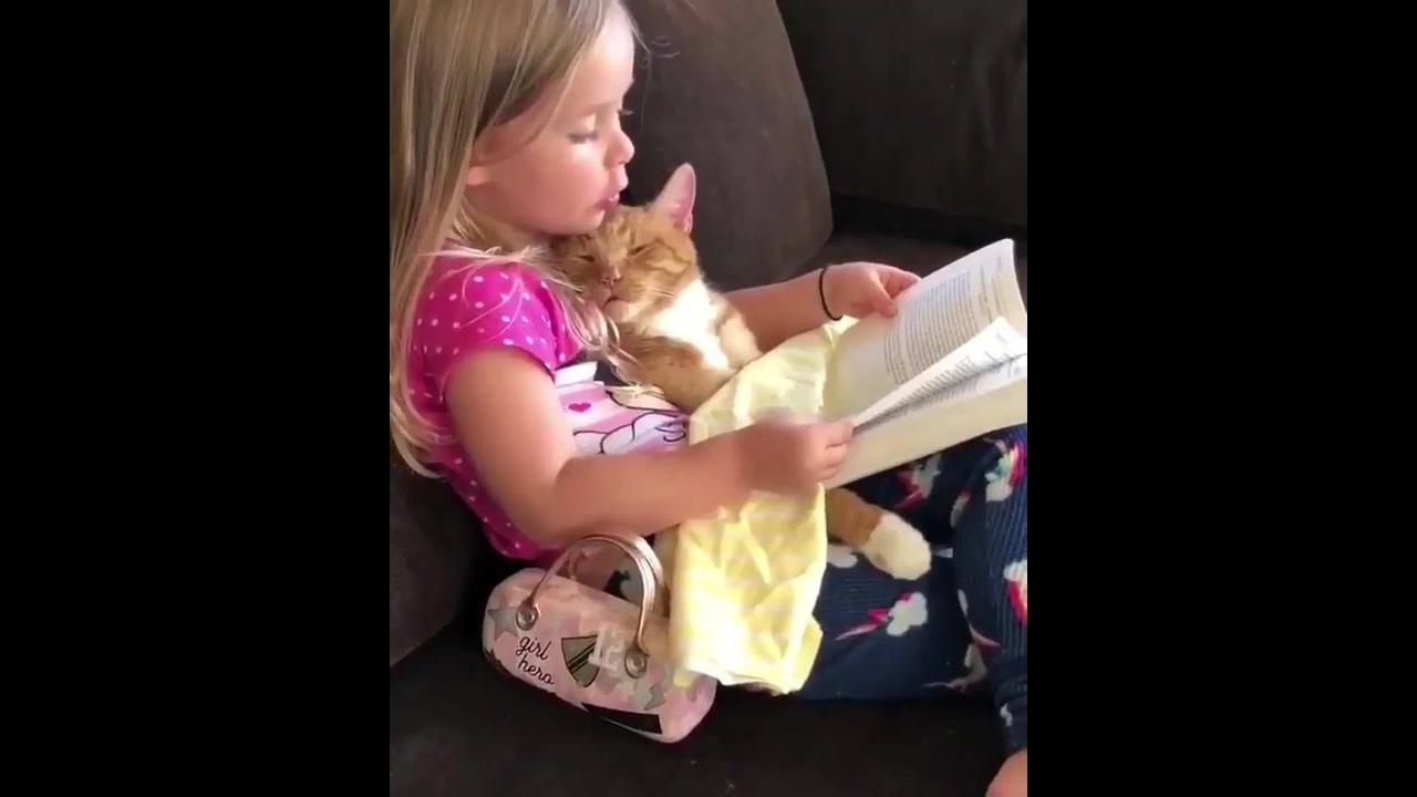 Gatinho escutando histórias que a garotinha esta inventando para ele