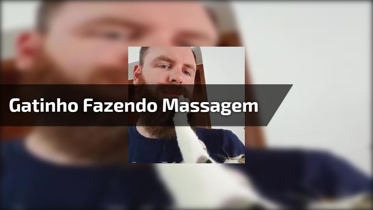 Gatinho fazendo massagem