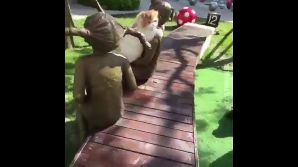 Gato abraça estátua de criança