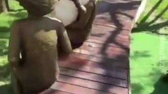 Gato Abraça Estátua De Criança, Que Cena Linda Gente, Confira!