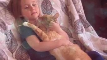 Gato Curtindo Colo De Sua Pequena Dona, Olha Só Que Amor Gente!