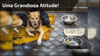 Homem Limpando O Lugar Que Os Cachorros Moram Na Rua, Veja Que Linda Atitude!