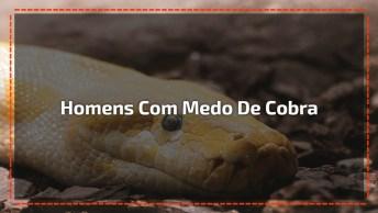 Homens Com Medo De Cobra, Será Que Seus Amigos Reagiriam Assim Também?