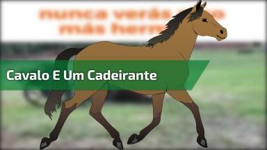 Imagens Emocionantes Entre Um Cavalo E Um Cadeirante, Muito Lindo!