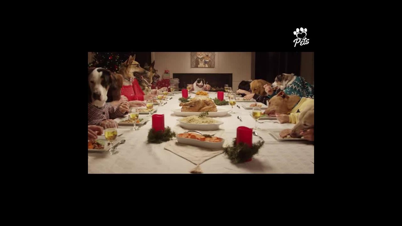 Jantar de natal dos Pets, que família mais linda