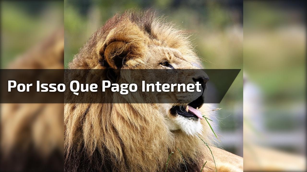 Por isso que pago internet