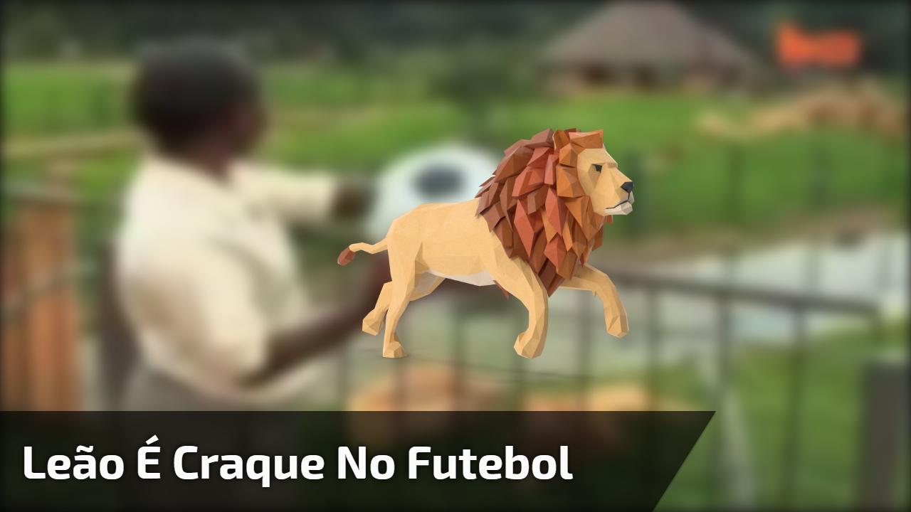 Leão é craque no futebol