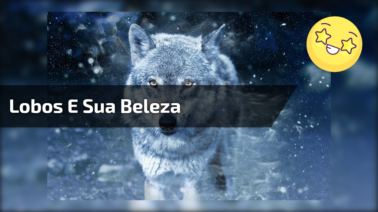 Lobos e sua beleza