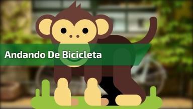 Macaco Andando De Bicicleta E Cachorro Atrapalhando A Cena Hahaha!