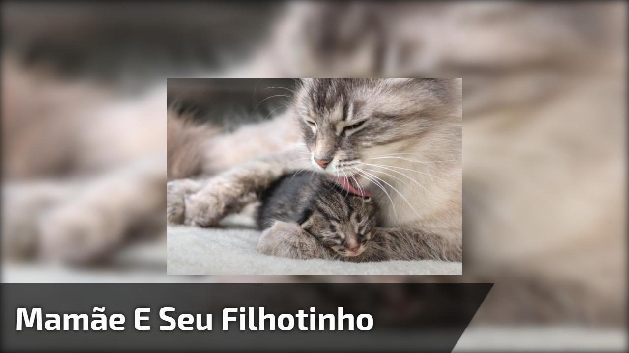 Mamãe e seu filhotinho