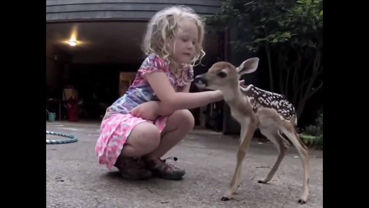 Menina e seu amigo veado, que amizade mais linda e sincera!