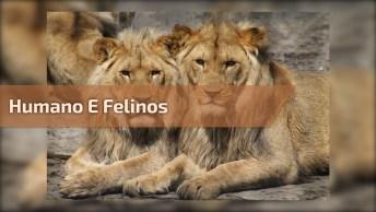 Momentos Entre Humano E Felinos Selvagens, Que Cena Mais Maravilhosa!