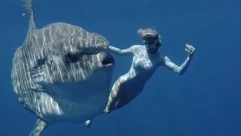 Mulher Nadando Com Peixe, Um Acontecimento Muito Especial!