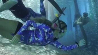Nadando Com Os Peixes, Veja Que Imagem Linda E Maravilhosa!