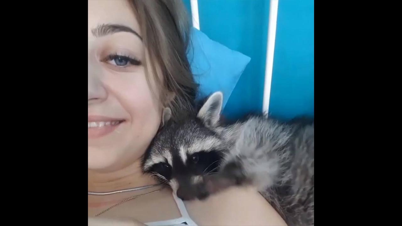 O amor entre humanos e animais, um video emocionante