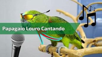 Papagaio Louro Gritando Gol Do Brasil, E Cantando Muito, Confira!