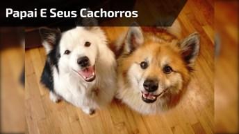 Papai Humano E Seus Dois Cachorros Lindos, Veja Que Família Incrível!