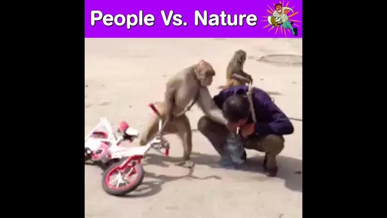 Pessoas em contados com os animais